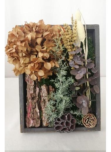 Kuru Çiçek Deposu Küçük Canlı Yosun Tablo Şoklanmış Çiçeklerle (23 cm*30 cm) Renkli